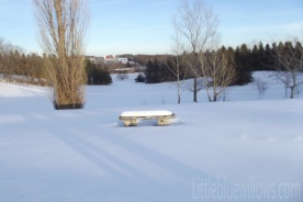 snowtrails